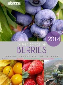 DIRECTORIO-BERRIES