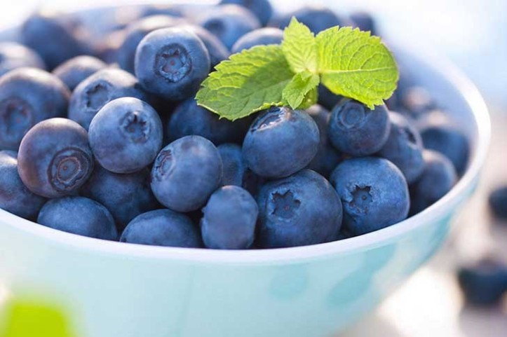Blueberries-in-a-bowl-728x485