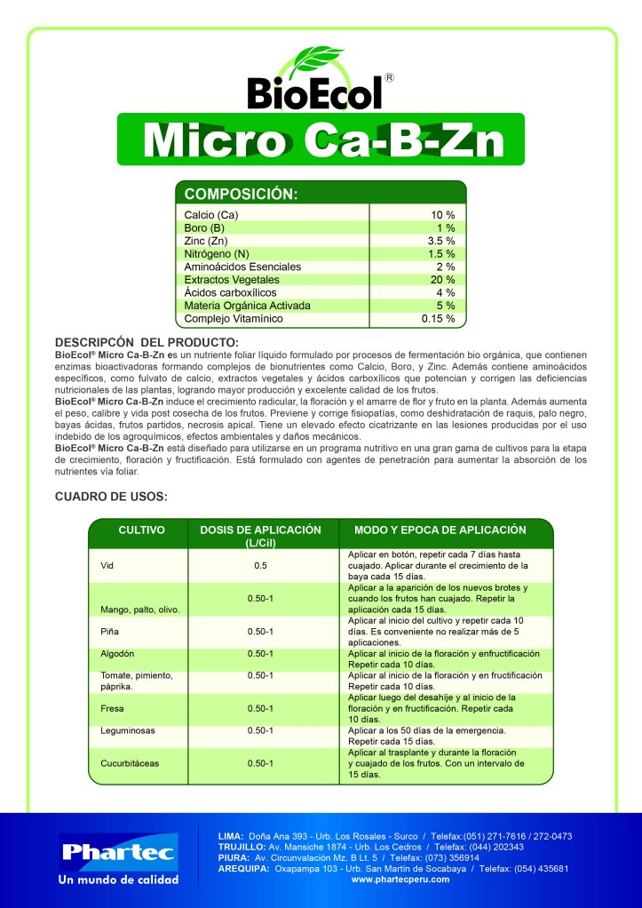 BE MicroCaBZn final