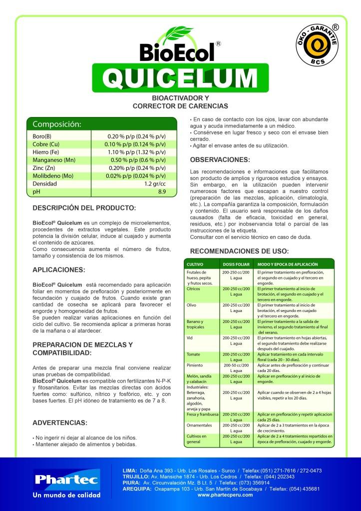 BE Quicelum