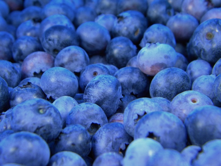 blueberries-1245724_1920