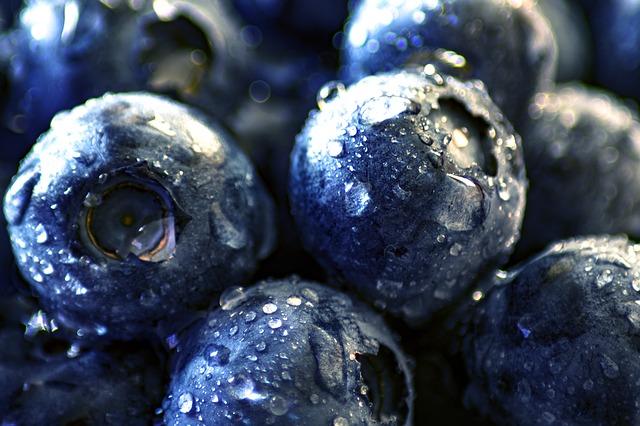 blueberry-3460421_640