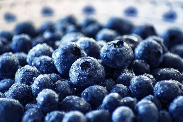 blueberry-3460423_640